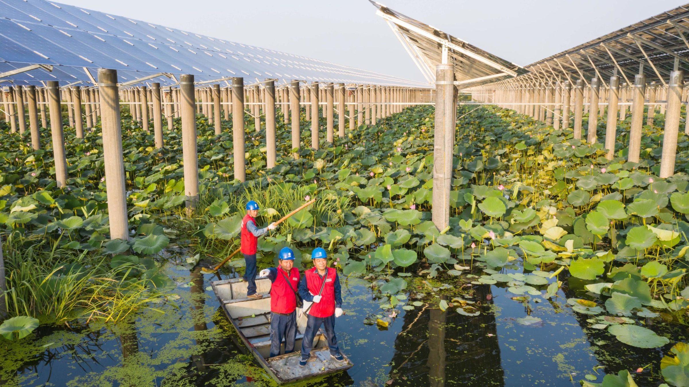 Green Finance in China